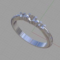 石がない状態の指輪のイメージ