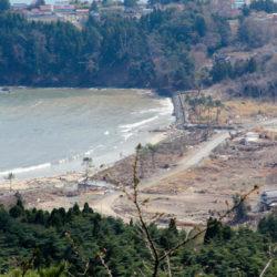 亀山より望んだ大島の浜の様子 防風林がなくなっている