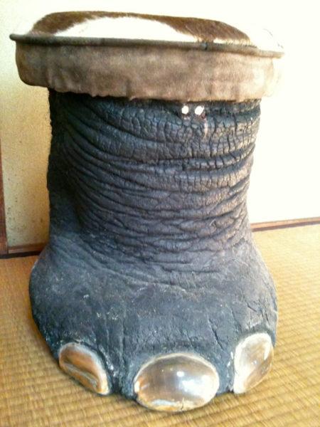 ゾウの足のイスです。