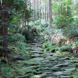 熊野古道(馬越峠)