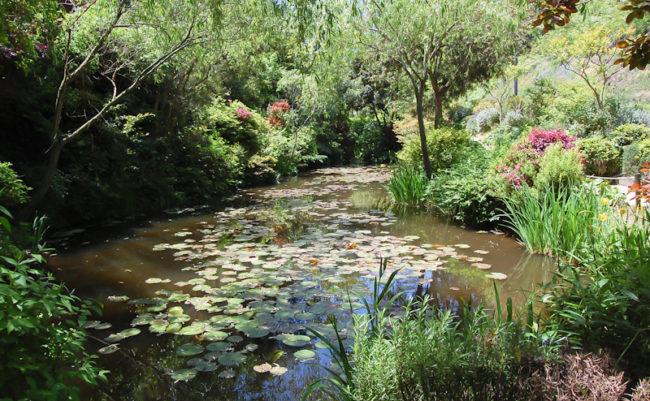 地中美術館前の池