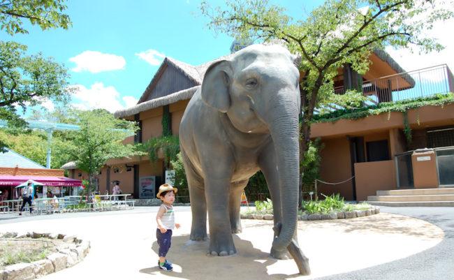 象のオブジェと賢明さん